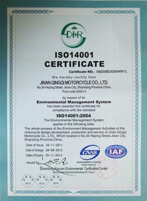 贝斯特BSTBET.COM_ISO14001证书-英文